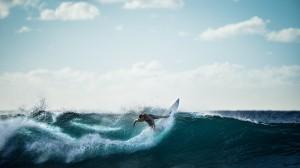 surfing-926822_1280